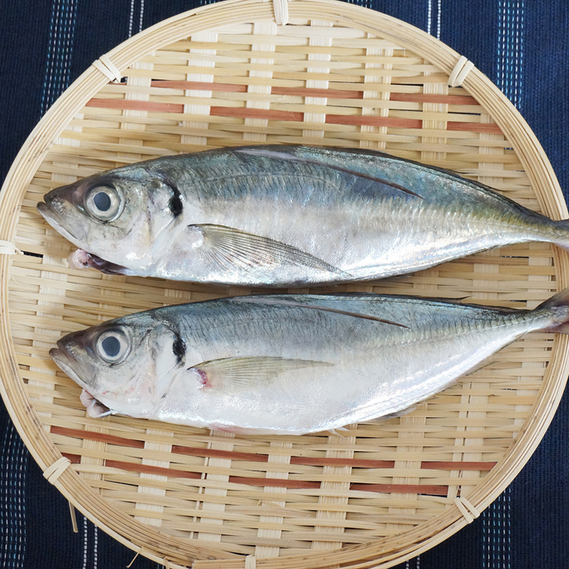 妊娠中にお魚は食べてもいいの?